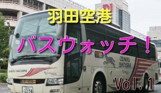 小田急箱根高速バスを羽田空港で1日ウォッチしてみた!