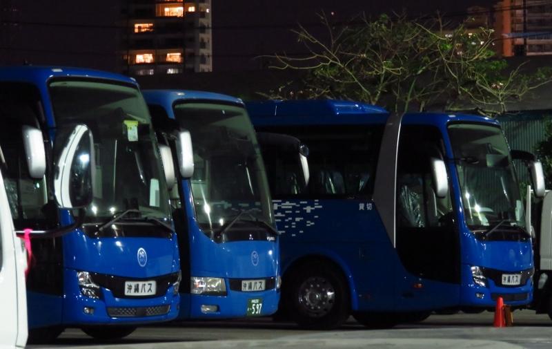 沖縄バス エアロエース 597