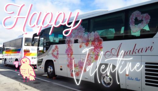 2021年~Happy Valentine~特別企画|沖縄の【ピンクバス】をご紹介!