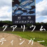 白い砂の水族館